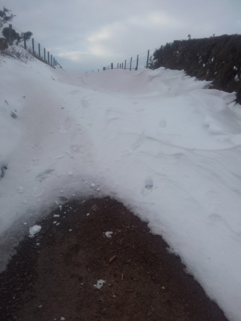 The snow cliff on the track
