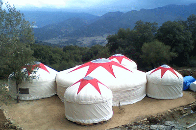 Adjoined yurts