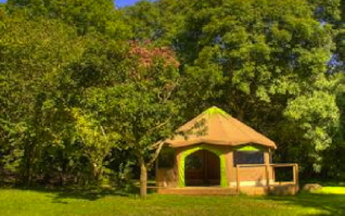 Cornish tent palaces