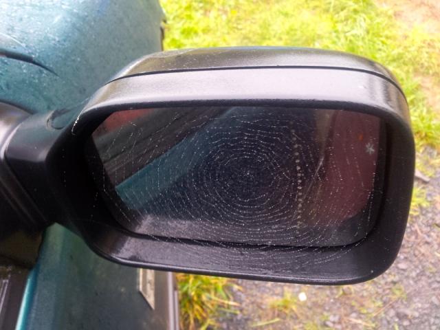 Wing mirror web