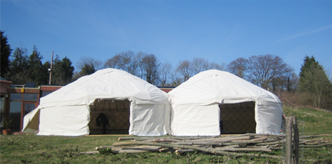 Adjoined yurts