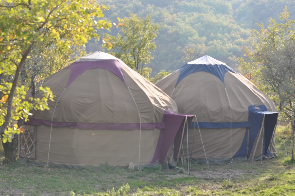The First Two Yurts of The Zodiac Tent